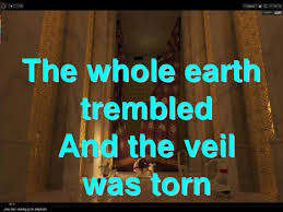 Image result for THE TORN VEIL