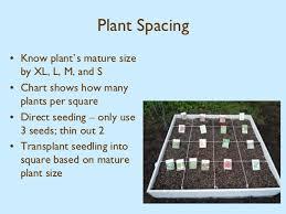 Square Foot Garden Plant Spacing Chart Square Foot Gardening Harvest Farm Community Garden