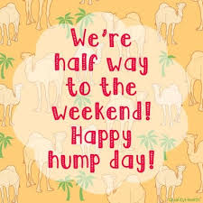 Happy Hump Day Quotes Magnificent Happy Hump Day Quotes Custom Happy Hump Day Quotes Kjpwg 48
