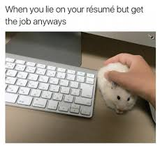 Best Can You Lie On A Resume Contemporary - Simple resume Office .