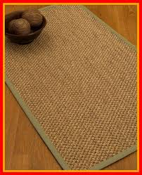 heier border hand woven brown sand area rug rug size rectangle 6 x 9 rug pad included yes