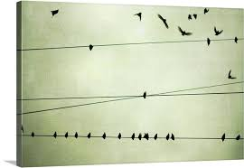 birds on a wire wall art birds on telephone wire bird wire wall art  on metal wall art birds on a wire with birds on a wire wall art birds on a wire wall art wall decoration
