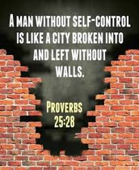 Image result for proverbs 25 bible gateway