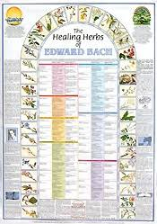Bach Flower Remedies Chart 3 Bach Flower Remedy Wall Chart Ready Reference Bach Flower