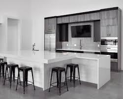 monochromatic black and white modern kitchen design the design uses diffe color tones