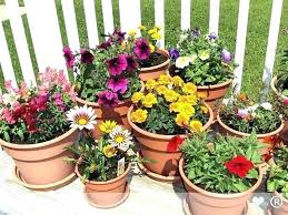 full size of outdoor planting pots ideas flower planters outside plant fabulous patio planter contemporary in
