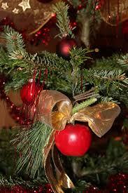 Weihnachtsschmuck Mit äpfeln Kreativ Weltde