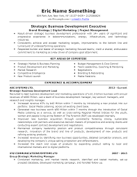 Resume Now Com Sample Resumes Top Resume Now 12