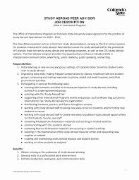 work study cover letters cover letters that work new cover letter for work study job