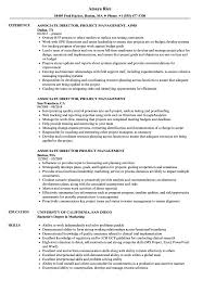 Pmp Resume Sample Associate Director Project Management Resume Samples Velvet Jobs 8