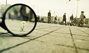 Image result for small things of life images