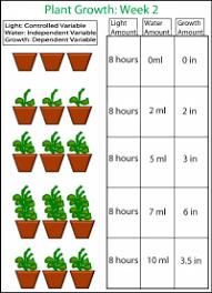Plant Growth Data Chart Fs6thgradesciencefair Ink