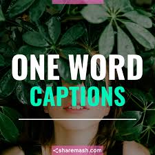 127 Best One Word Captions For Instagram Short Captions 2019