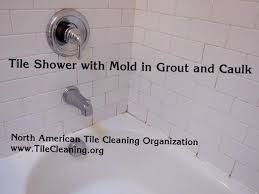 shower caulk mold black next to easy fix with some how to get rid