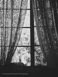 Lace Window Treatments Black Lace Curtains Its All Black And White Pinterest