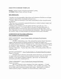 Samples Of Resume Summary Examples for Resume Inspirational Word Executive Summary 35