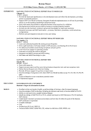 Sap Expert Resume Samples Velvet Jobs