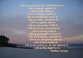 Mother Teresa Quotes Life Interesting Life Quotes Mother Teresa 48 QuotesBae