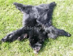 bear skin rugs imitation rug for faux uk white