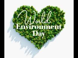 world environment day essay  world environment day essay