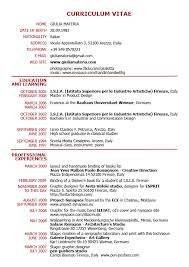 Example Of A Good Cv Pdf 12 Joele Barb