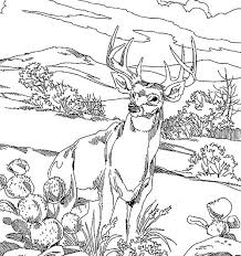 Small Picture hunting coloring pages