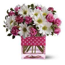teleflora s polka dots and posies in albuquerque nm apple blossoms florist