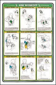 Arm Workout Fitness Chart F7