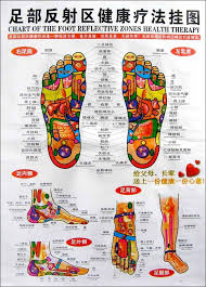 Chinese English Chart Foot Reflective Zones Health Therapy