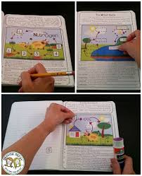 Ecosystems and Ecology Interactive Notebook | Activities, Ecology ...