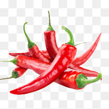 chili pepper png. Beautiful Png Food Red Chili Reinwardtia Chili Peppers PNG And PSD Throughout Pepper Png Pngtree