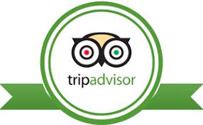 Image result for tripadvisor logo