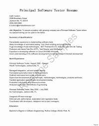 Programmer Resume Sample Software Programmer Resume Sample New Professional Programmer 16