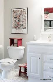 a bathroom paired with repose gray and crisp white trim and vanity