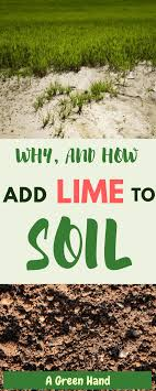 first we ll delve into what lime is in the first place and assess its relevance to the health of one s lawn afterward we ll talk about the procedure of