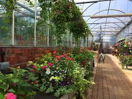 garden centre hexham