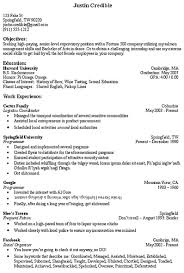 Objective Section Of Resume Outathyme Com