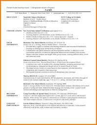 7 College Undergraduate Resume Sample Payslips Format