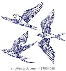 flying bird drawing. Modren Bird Set Of Three Swallows Flying Hand Drawn Graphics Sketch With Flying Bird Drawing O