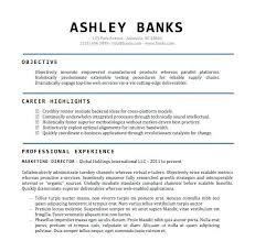 Web Services Resume New Sample Resume Word File On Template Doc R Fancy Earpodco