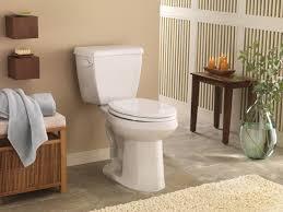 avalanche toilet
