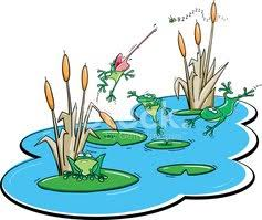 Výsledok vyhľadávania obrázkov pre dopyt rybník