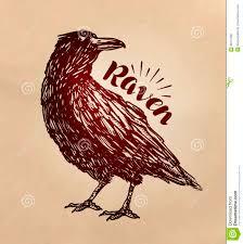 ворон нарисованный годом сбора винограда ворона эскиз птицы также