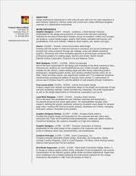 14 Great Functional Resume Realty Executives Mi Invoice And