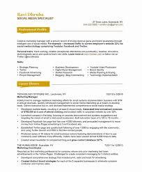 Brand Specialist Sample Resume Custom Digital Marketing Specialist Resume Sample Greatest Download Social