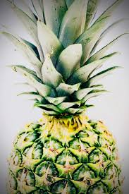 Not associated with the federal reserve. Bitcoin Philanthropist And Founder Of Pineapple Fund Bids Adieu