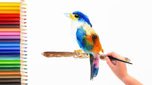 tutorial watercolor for beginner learn how to paint a bird in watercolor