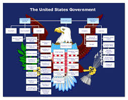 United States Government Flow Chart Residential College Goddard U S Government 101 Workshop