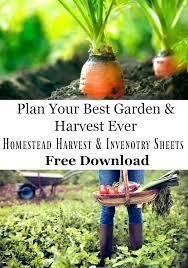garden harvest basket. what garden harvest basket ,