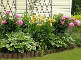 small garden full of flowers